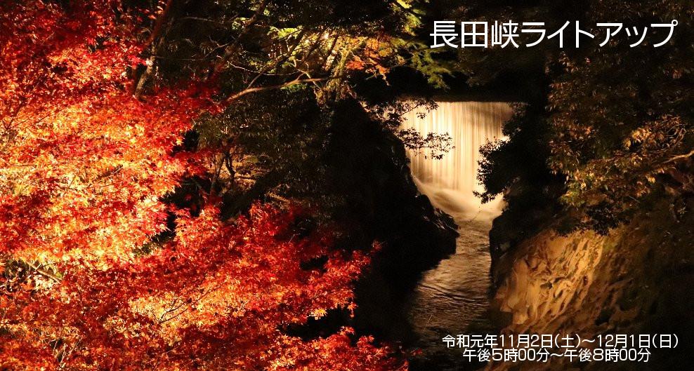 長田峡ライトアップ